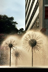 Blowballs (credit_00) Tags: water fountain analog germany deutschland dresden pentax saxony sachsen mesuper pusteblume blowballs