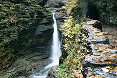 Watkins Glen (Christy Hibsch ( Christy's Creations on Facebook )) Tags: autumn waterfalls gorge fingerlakes senecalake wny watkinsglenstatepark glencreek schuylercounty