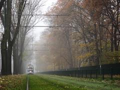 (ela_s) Tags: canon krakow explore s90 jesień tramwaj mgła parkjordana salonpolski