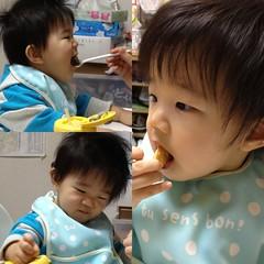 お食事とらちゃん(2011/11/7)