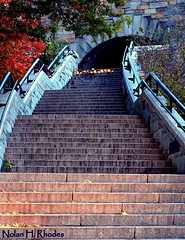 Transgressing The Heights Of A Stairway In Riverside Park NYC (nrhodesphotos(the_eye_of_the_moment)) Tags: nyc autumn trees stone colorful perspective tunnel stairway walls railing riversidepark metla nrhodesphotosyahoocom wwwflickrcomphotostheeyeofthemoment dsc03371nhr