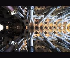 Flauto di vertebre (claudionimuc) Tags: nikon sagradafamilia barcellona spagna gaud wow1 wow2 greatphotographers doubleniceshot mygearandme mygearandmepremium mygearandmebronze flickrstruereflection1 flickrstruereflection2 flickrstruereflection3 flickrstruereflection4 flickrstruereflection5 flickrstruereflection6 claudionimuc trueexcellence1 trueexcellence2 trueexcellence3 claudiocumin