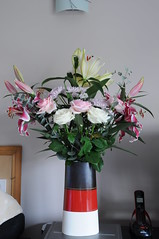 Flowers (GE Cox) Tags: flowers roses garden lily lilies stamen stigma filament whiterose whitelily pinkrose pinklily tepal gynoecium
