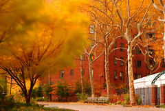 DSC_2569 (Yu&Yu Studio) Tags: newyorkcity stuyvesanttown bw10stopndfilter nikonflickrawardgold