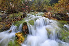 Rhythm of the Falls (nawapa) Tags: china travel autumn landscape waterfall view falls valley pearl sichuan jiuzhaigou shoal 2011 nanping nawapa