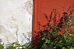Tricolore a soqquadro (Flavio Piffer) Tags: red plants muro verde industry nature wall flora rust shadows rusty natura ombre diagonal piante rosso industria ruggine intonaco bandieraitaliana