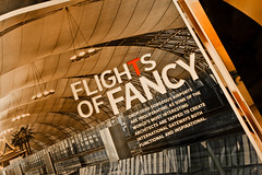 """ Flights of Fancy : Gorgeous aviation love "" (