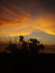 Darwin (Obi Hood) Tags: mer de soleil coucher paysage australie