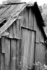 old shack (Evan Kemper) Tags: wood blackandwhite bw vancouver f14 olympus richmond konica ep2 finnslough 57mm
