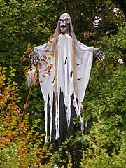 Marley's Ghost or Grim Reaper? (DebDubya) Tags: halloween leaves skeleton death scary holidays reaper spirit ghost northcarolina foliage buenavista horror countryclub winstonsalem grimreaper spook specter residentialneighborhood marleysghost