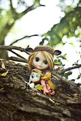 They climbed a Tree