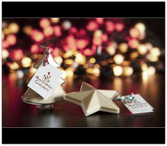 Christmas Chocolate Moulds! (Samantha Nicol Art Photography) Tags: white tree art star nikon dof bokeh chocolate abercrombie samantha mould nicol