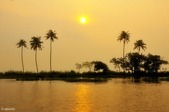 Good Evening (raghavvidya) Tags: india evening good country kerala explore gods own raghavvidya