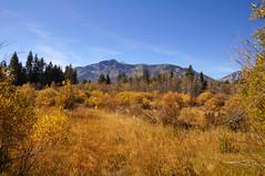 2011-10-15 10-23 Sierra Nevada 576 South Lake Tahoe, Taylor Creek, Mt. Tallac.jpg