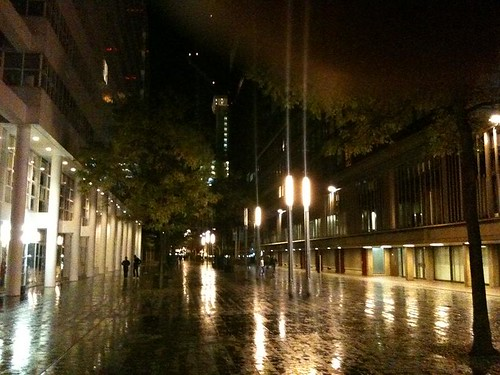Rainy streets in Den Haag (Netherlands 2010)