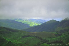 Munnar (H a s h e e d) Tags: blue light sky mountain green garden tea hill kerala munnar