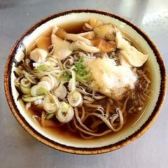 お昼は小淵沢駅構内の駅そばできのこおろしそば400円なり