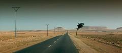 Desert (Julio López Saguar) Tags: road tree landscape arbol desert carretera empty paisaje panoramic morocco marrakech desierto panorámica vacia lemaroc juliolópezsaguar