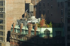A Hermitage on Fifth Avenue (dakw23) Tags: leica nyc raw manhattan apo summicron hermitage f4 roofgarden 75mm
