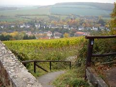 Rheinsteig bei Frauenstein