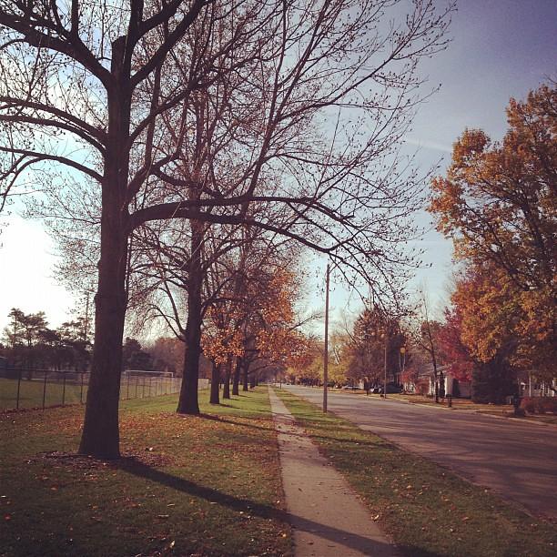 Mile Seven #11miles #11/11/11 #running