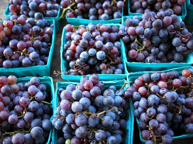 COncord Grapes at Union Square