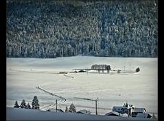 Swiss winter time 2008 in the Jura Mountains : La Sagne. 1000 m alt.( Canton of Neuchâtel Near La Chaux-de-Fonds). no. (Izakigur) Tags: winter schweiz switzerland nc nikon europa europe flickr suisse suiza swiss feel lac ne jura liberté coolpix iphoto svizzera neuchatel neuchâtel picnik lepetitprince lasagne ch dieschweiz 瑞士 suïssa neuenburg isviçre suizo nikoncoolpix chauxdefonds romandie suisseromande 스위스 lachauxdefonds myswitzerland nech lasuisse romande mywinners cantondeneuchâtel svislando nikoncoolpixp5100 izakigur lesamisdupetitprince cantonofneuchatel 명사 suisia imagesforthelittleprince izakigur2008 paysdeneuchâtel izakigurneuchâtel cantondeneuchâtelliberta
