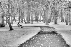Regarder les flocons tomber... / Watching Snowflakes Fall... (guysamsonphoto) Tags: winter bw noiretblanc hiver hdr victoriaville victo micronikkor105mmf28 nikond7000 guysamson