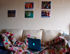 Apples  & Polka Dots (Room With A View) Tags: color mac pix sofa ourdailychallenge
