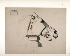 37_head_of_horse_partheon (Martin E. O'Connor) Tags: life sculpture print greek drawing traditional plaster size cast realist classical plates sight barge atelier palte bargue sightsize