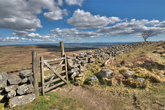 Sea view from Dartmoor (rosyrosie2009) Tags: uk england clouds photography coast spring nikon gate flickr photos devon stonewalls dartmoor hdr gettyimages westcountry teignmouth riverteign photomatix tonemapped devonandcornwall d5000 rosiesphotos nikond5000 tamronspaf1024mmf3545diiildasphericalif rosiespooner rosyrosie2009 rosemaryspooner rosiespoonerphotography