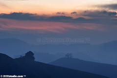 Layers (2121studio) Tags: nature sunrise dawn nikon ali malaysia indah cameronhighlands kuantan alam malaysianphotographer drali sgpalasteaplantation 2121studio kuantanphotographer pahangphotographer ciptaanallahswt 0139342121 nubleebinshamsubahar