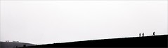 long way ahead (bNat!) Tags: horses people bw españa white mountain lake black blanco fog way lago caballos gente camino perfil negro silhouettes asturias bn montaña cami gent blanc niebla siluetas negre muntanya llac cavalls asturies covadonga espanya boira siluetes