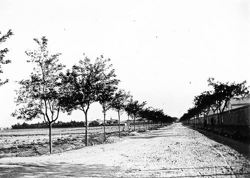 Calle Azucarera en los años 20