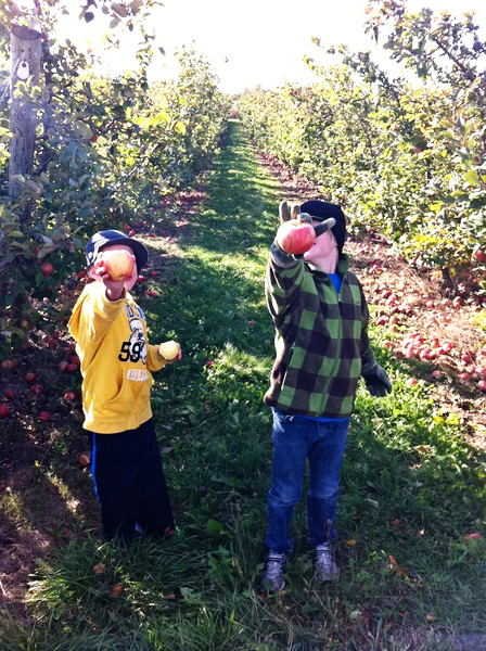 applepicking9-1011