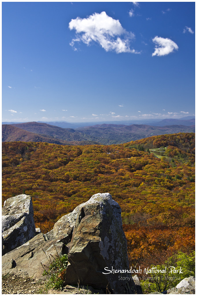 """情人渡""国家公园 (Shenandoah National Park) 秋天"
