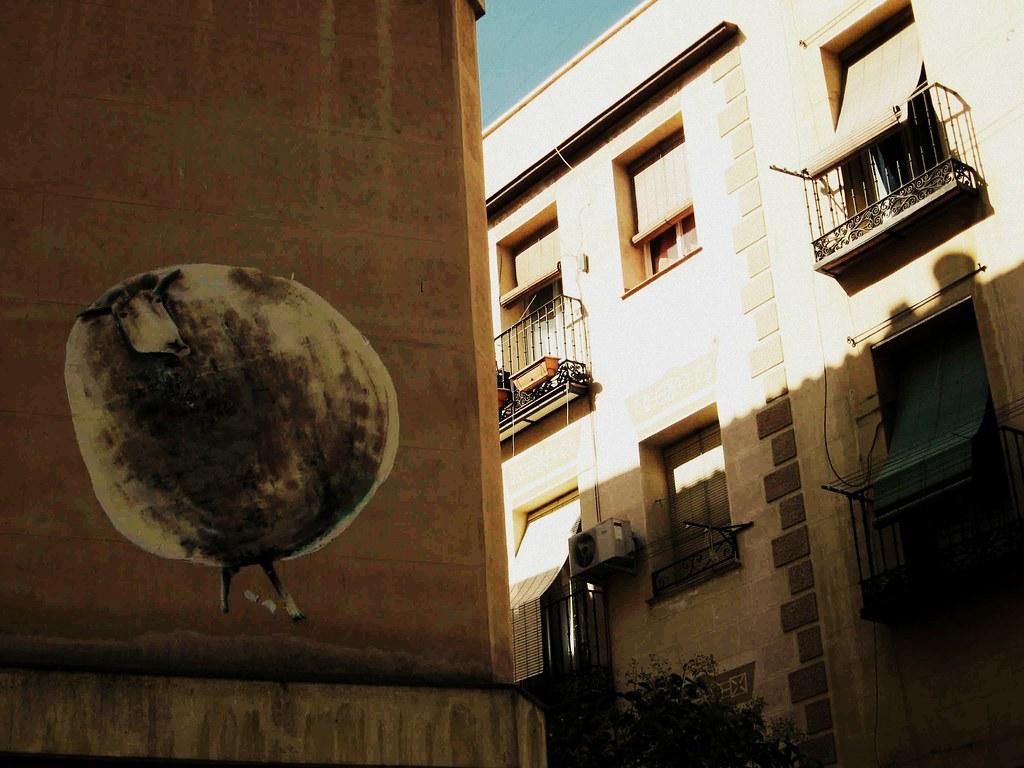 Oveja urbana 01