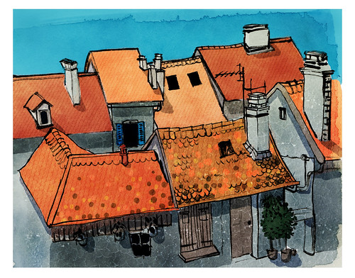 Annecy_roof
