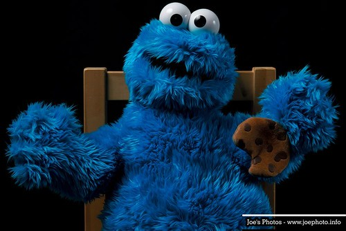 Cookie Monster by Joachim Ziebs