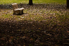 alone (mr_i) Tags: green love nature 50mm chair nikon alone bokeh jungle harmony lonely nikkor kuantan d90