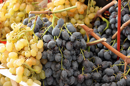Italian grapes at market