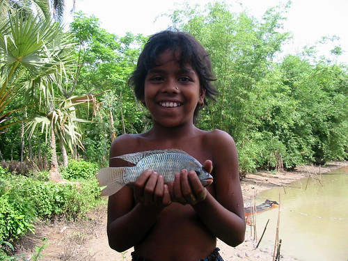 Girl with GIFT tilapia, Bangladesh. Photo by WorldFish, 2004