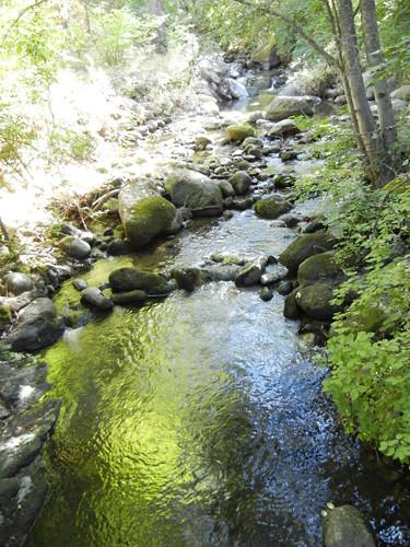 Lithia Park, Ashland, Oregon _ 6370