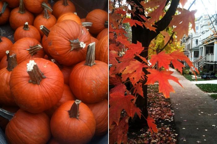 autumnduo