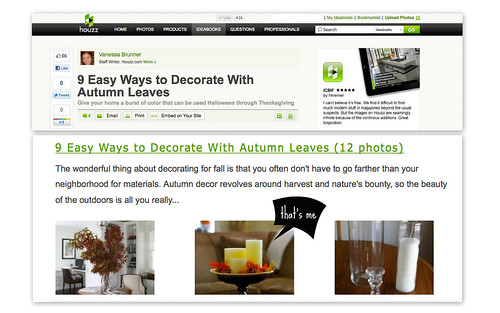 houzz article_collage