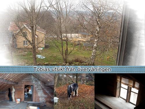 Tobias utsikt