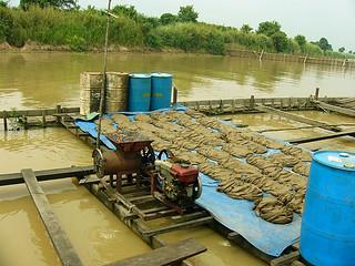Cage aquaculture, Cambodia. Photo by Eric Baran, 2010