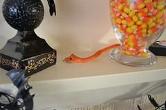 snakey snake