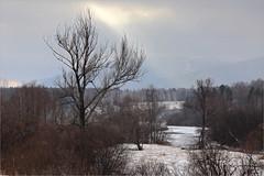 (Kirill & K) Tags: autumn winter landscape  agidel southural