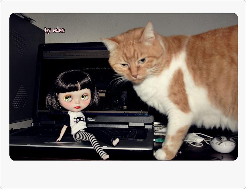 222c83a66 Amelie y Lilith. (edea44) Tags: cat ooak gato gata blythe custom takara